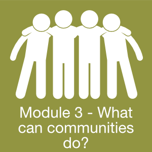 Module 3 What communities can do