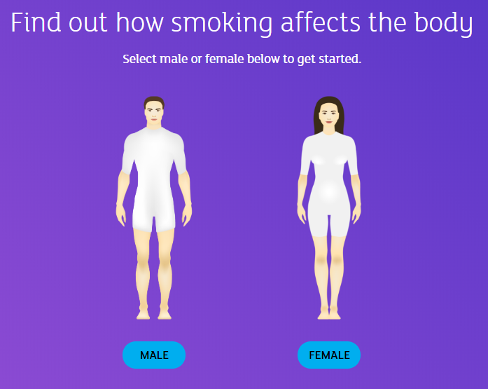 How-smoking-affects-the-body.png